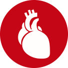Cardiovasculaire